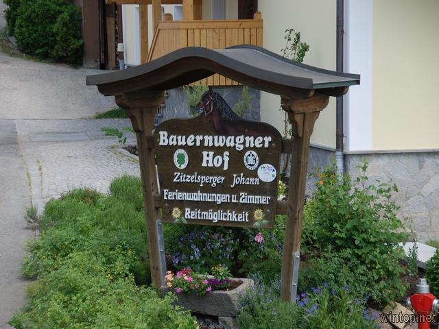 Bauernhof Bauernwagner-Hof in Langdorf