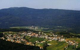 Pension-Bauernhof Kaufmann  in Langdorf