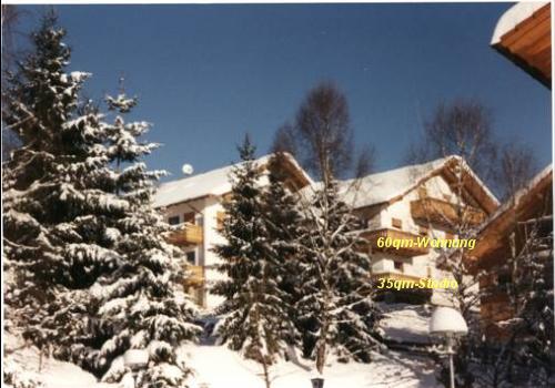 Kronbergblick in Bodenmais