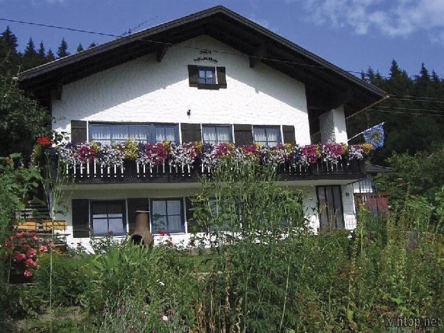 Ferienwohnung Haus Waldesruh in Freyung