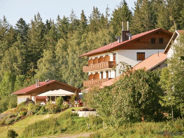 Berggasthof Zottling in Patersdorf
