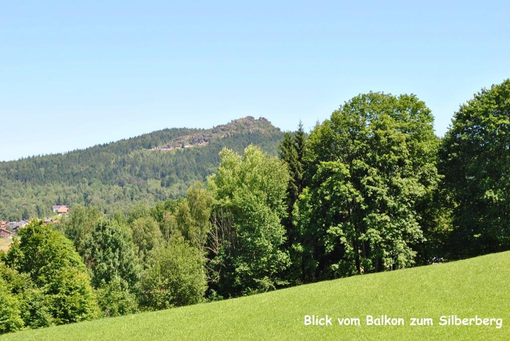 Ferienwohnung Zech in Bodenmais