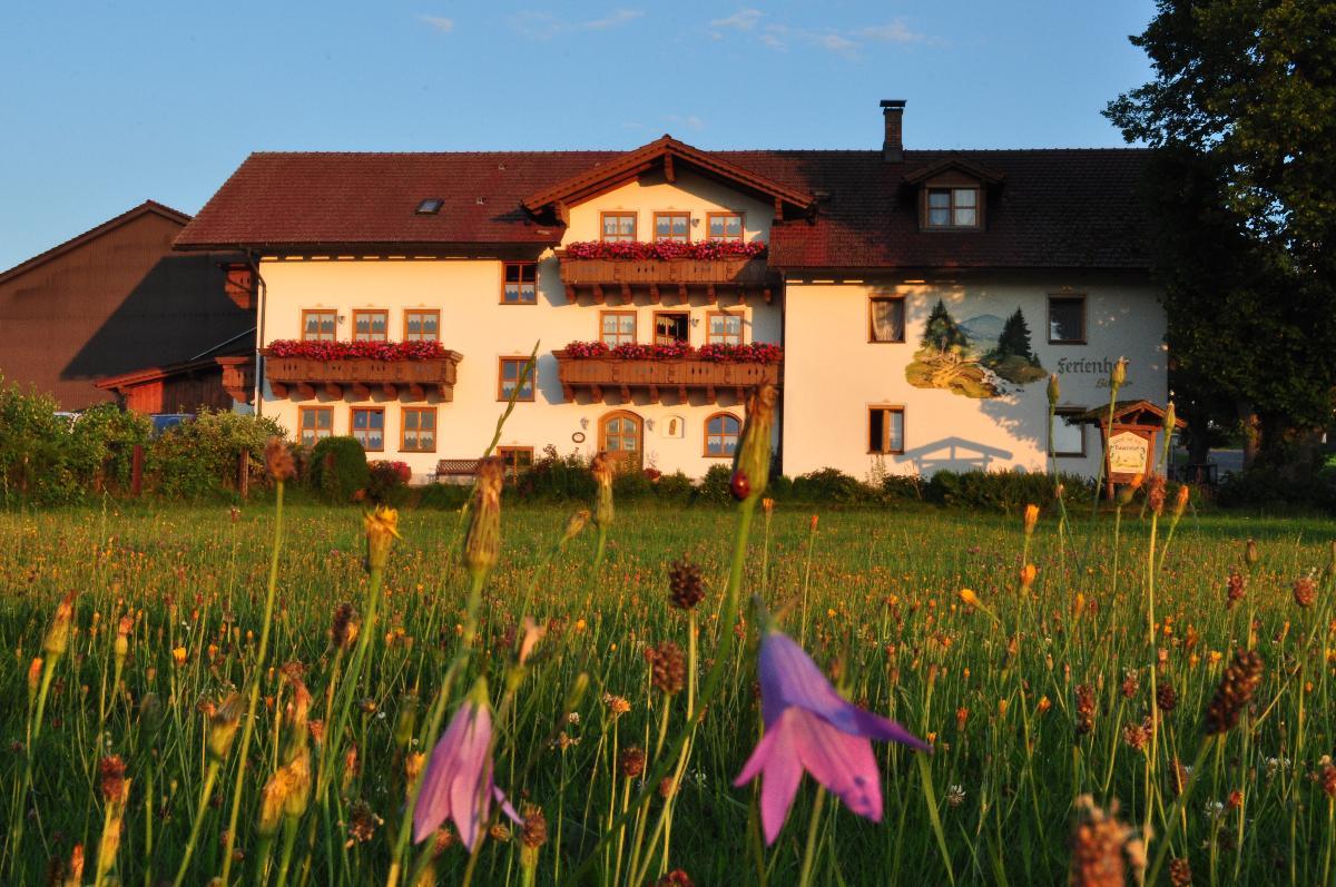 Bauernhof Bauer