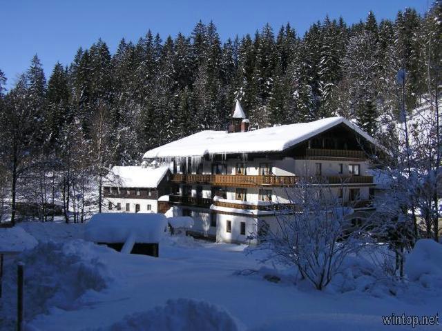 Natur- & Wanderhotel - Gasthof Mühle in Rinchnach