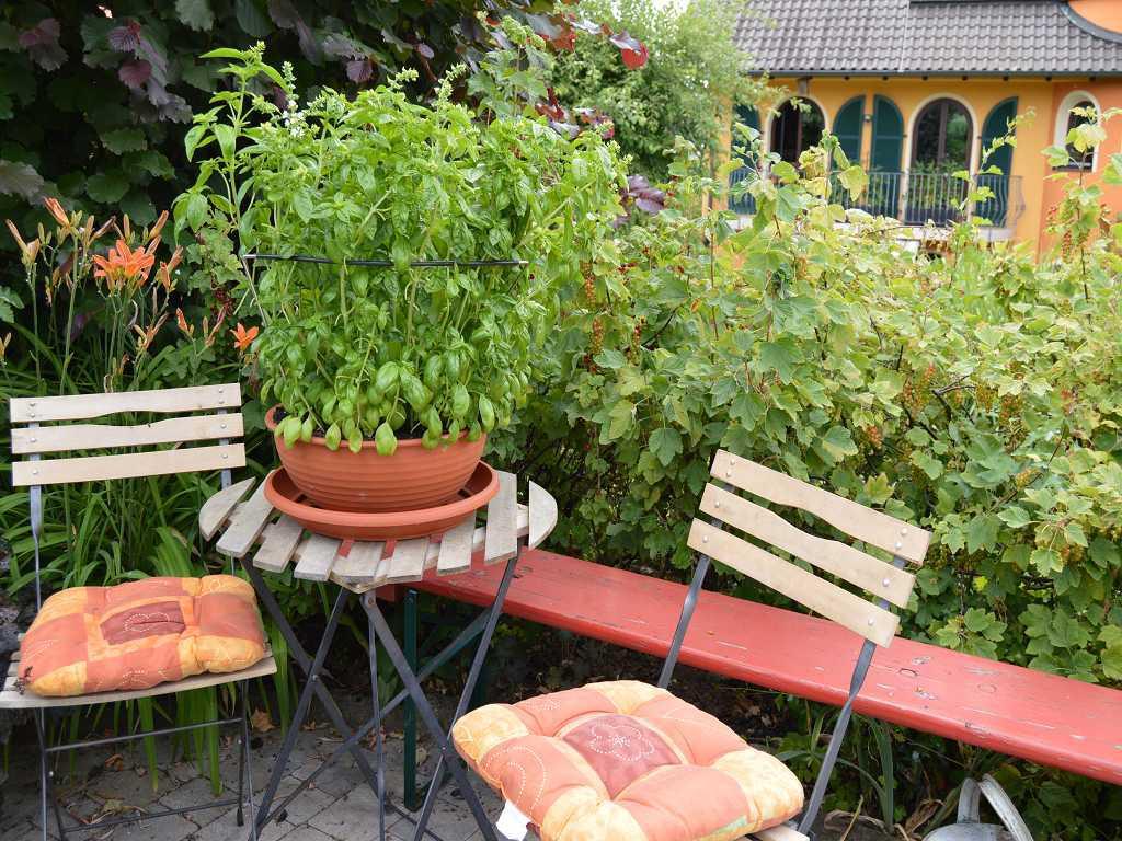 Ferienwohnung Paradies in Ebensfeld