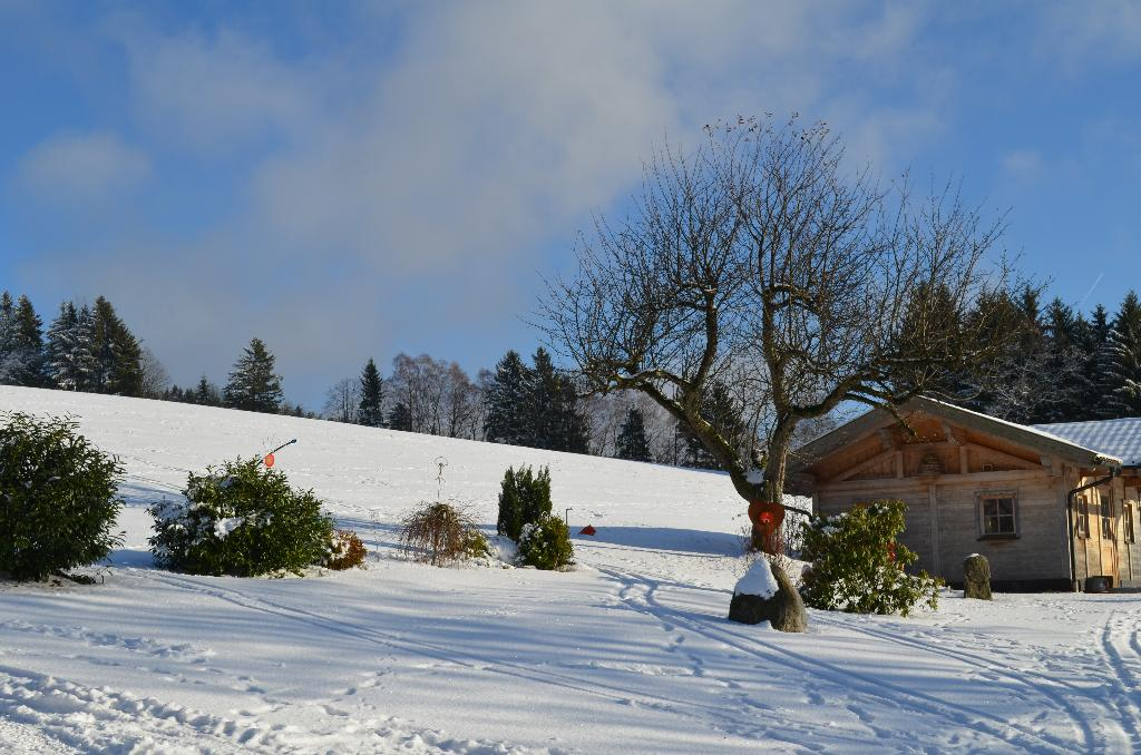 Bio-, Naturland- und Erlebnisbauernhof Beim Angerbauer in Sankt Englmar