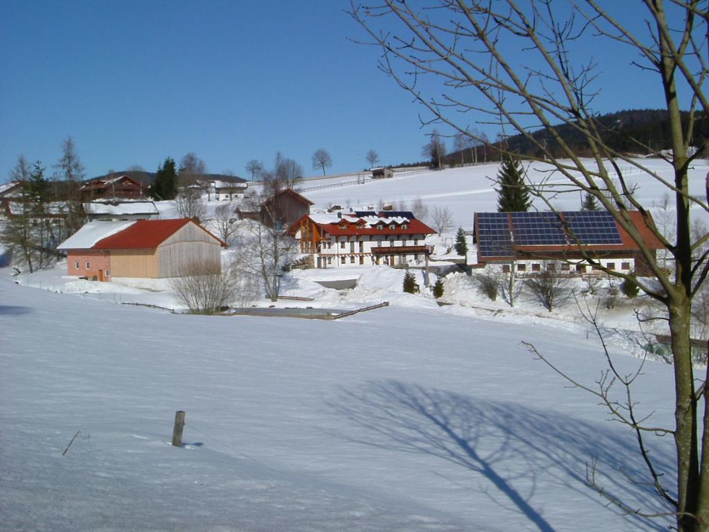 Bauernhof Zollner in Sankt Englmar