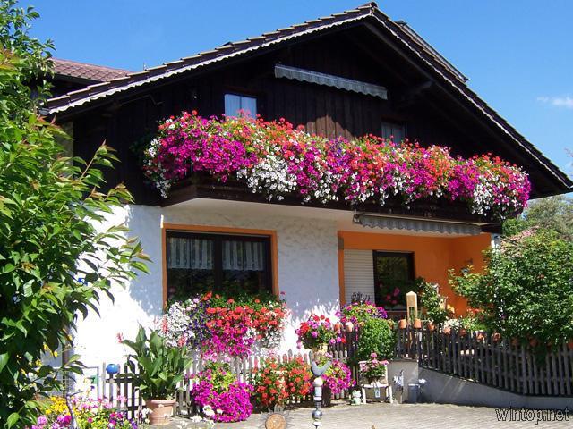 Haus Schmid in Innernzell
