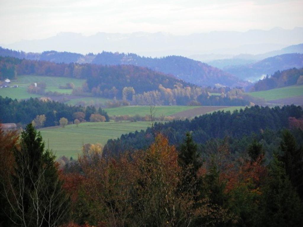 Pension Habichtstein in Kirchdorf i. Wald