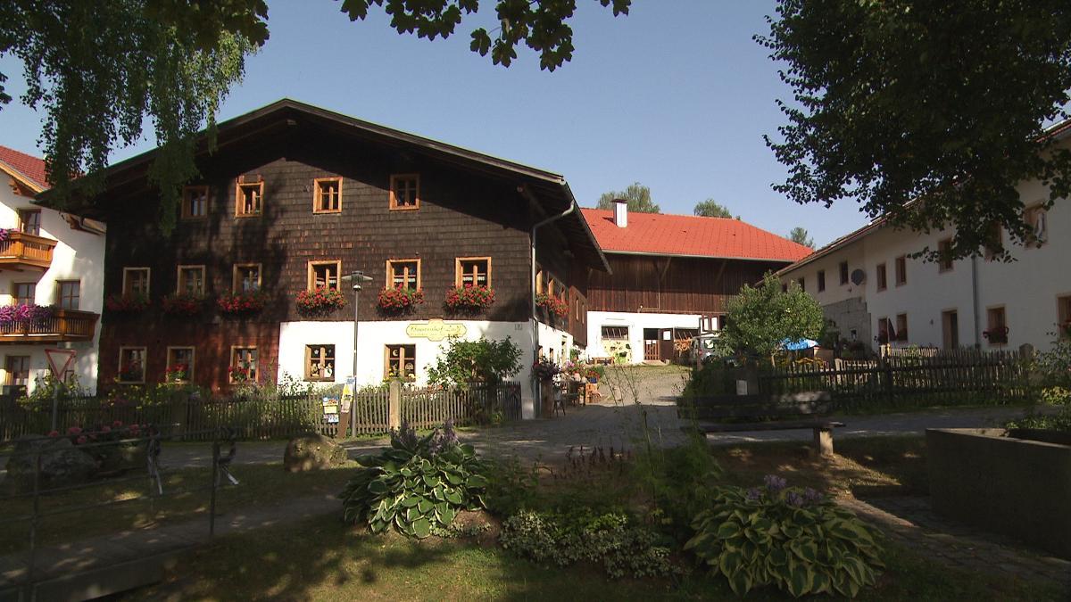 Schedlbauernhof in Arnbruck
