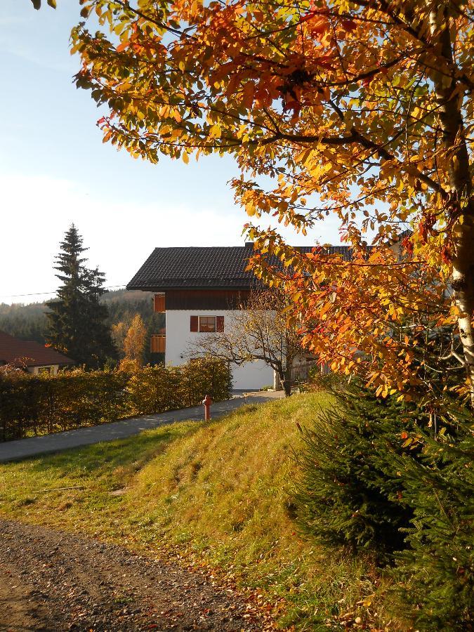 Ferienwohnung Piller in Hohenau