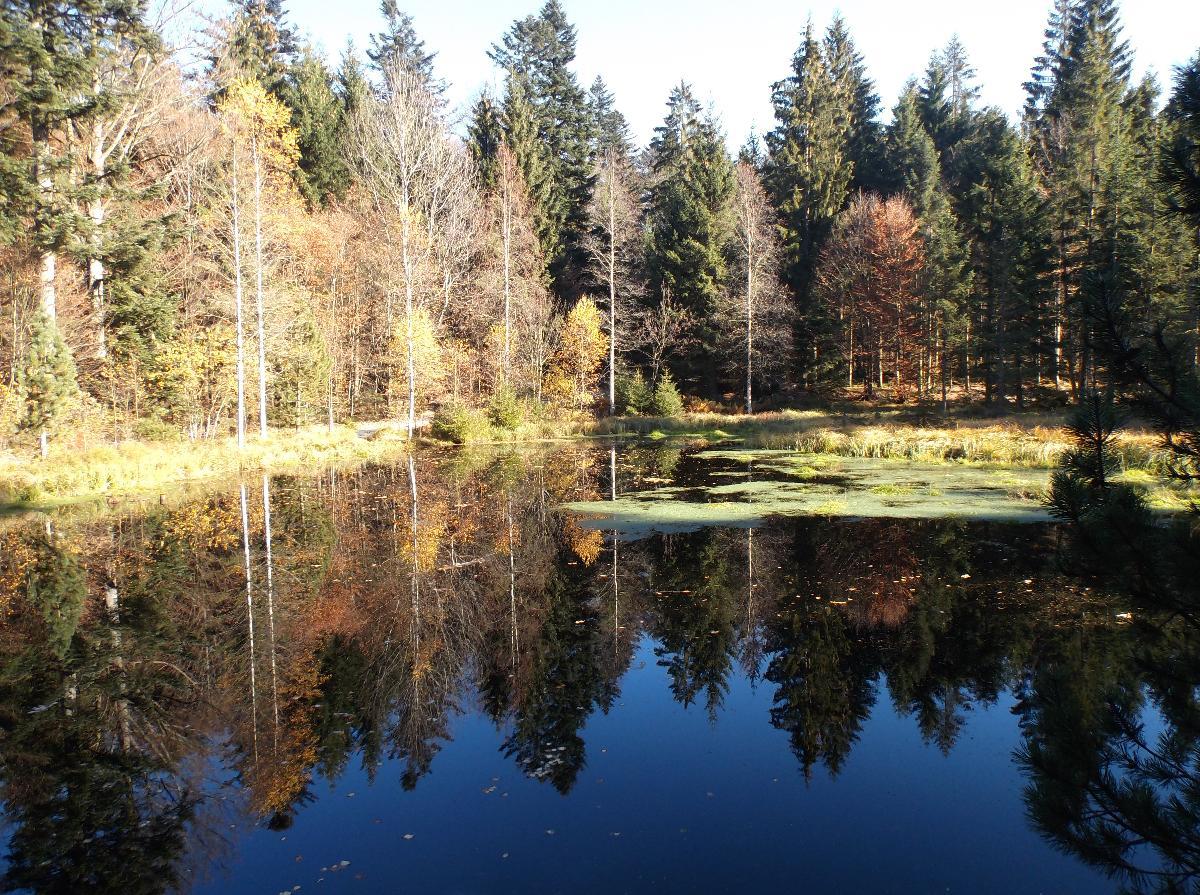 Ferienwohnung Lindenhof in Sankt Englmar