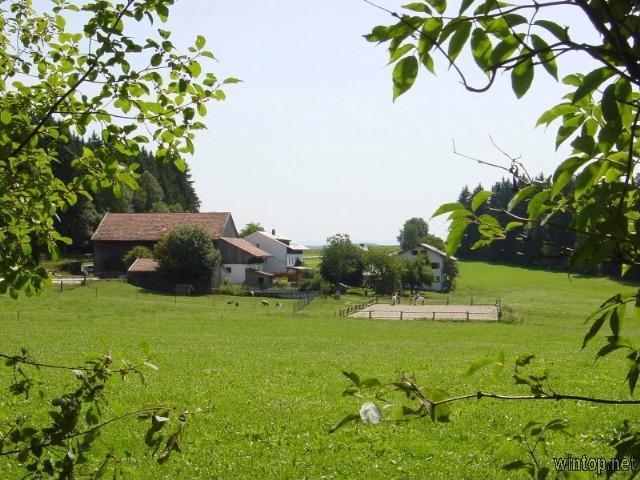 Wieshof in Kirchberg i. Wald