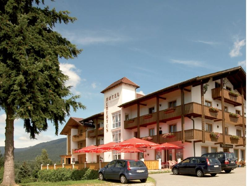 Hotel  Pension Gasthof Hubertus in Arnbruck