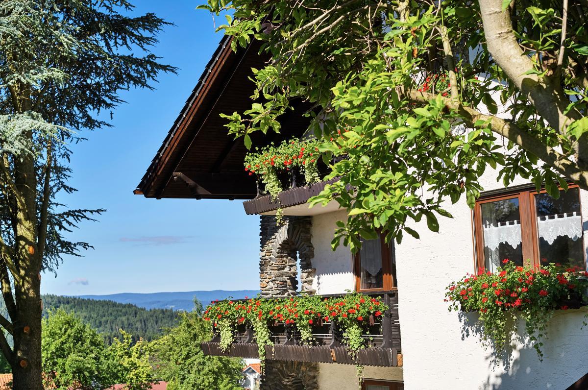 Ferienhaus Fidelis in Bodenmais