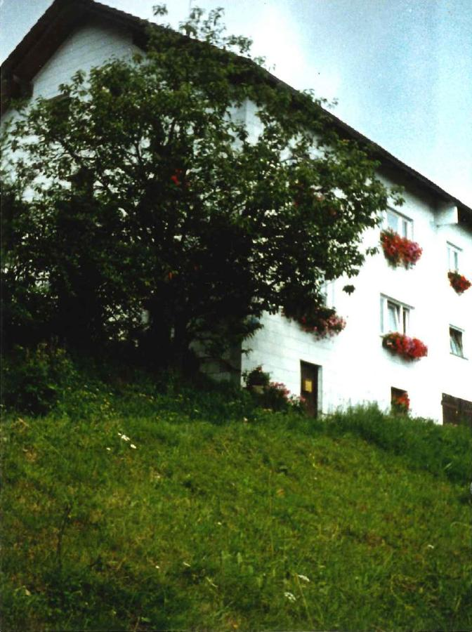 Bogner Hildegard in Hauzenberg