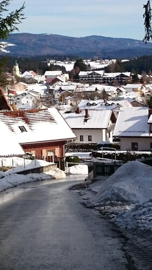 Ferienhaus Barthelmes in Spiegelau