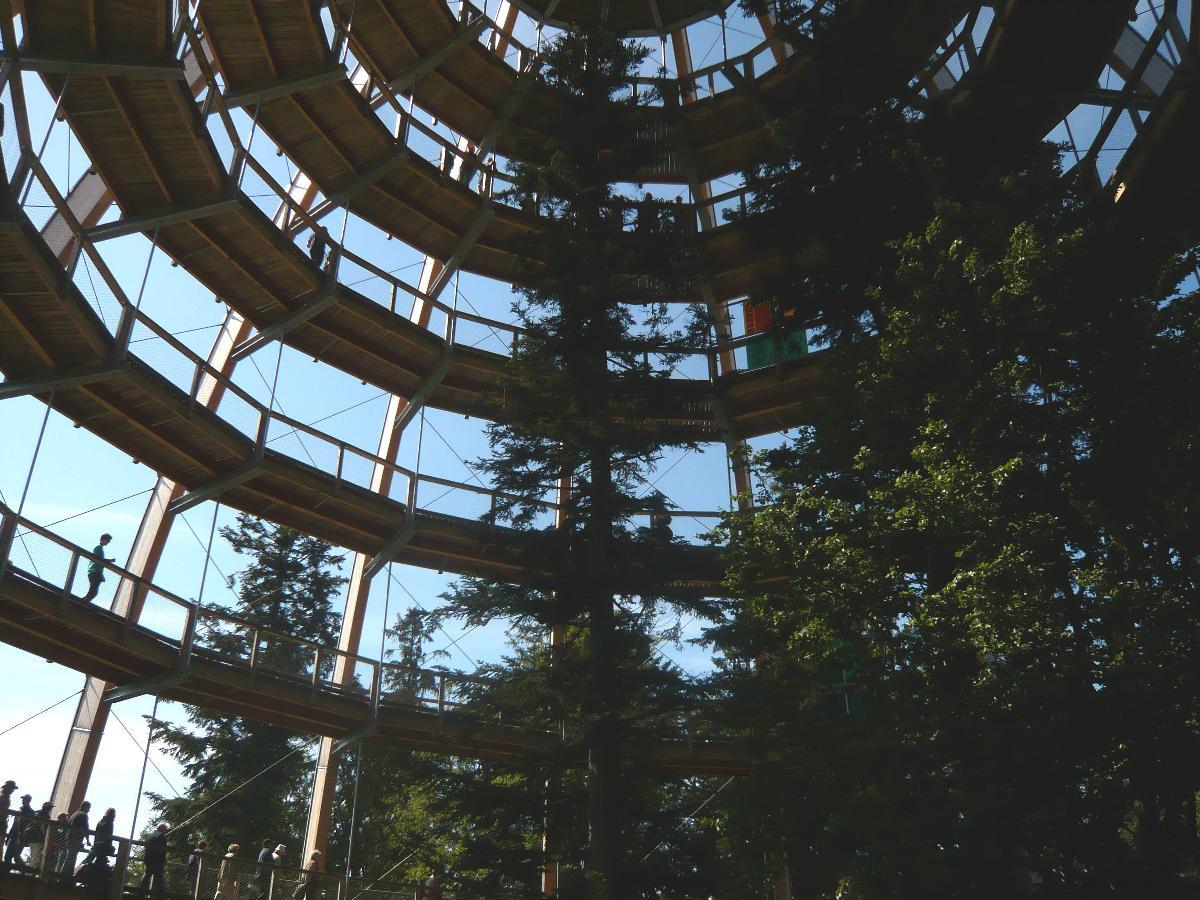 Ferienwohnungen Haus Paradies in Sankt Englmar