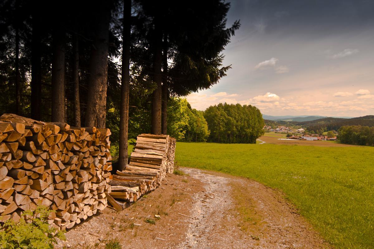 Paulas Bauernhof in Achslach