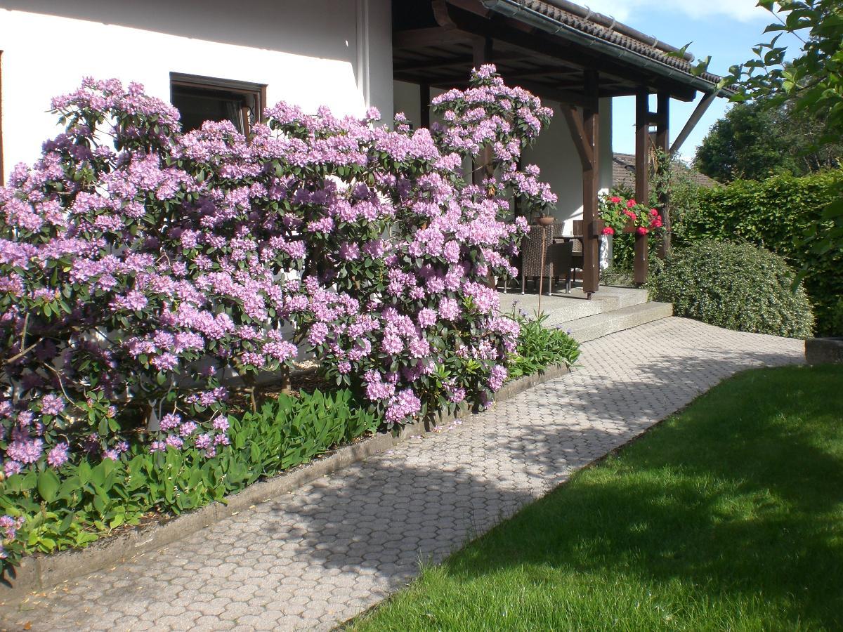 Ferienwohnung Trauner in Grafenau