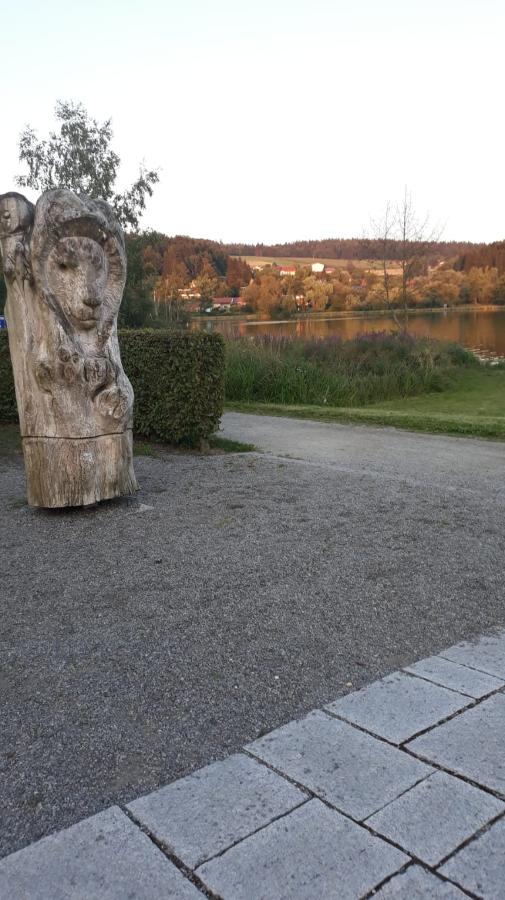 Fewo Seeblick in Waldkirchen