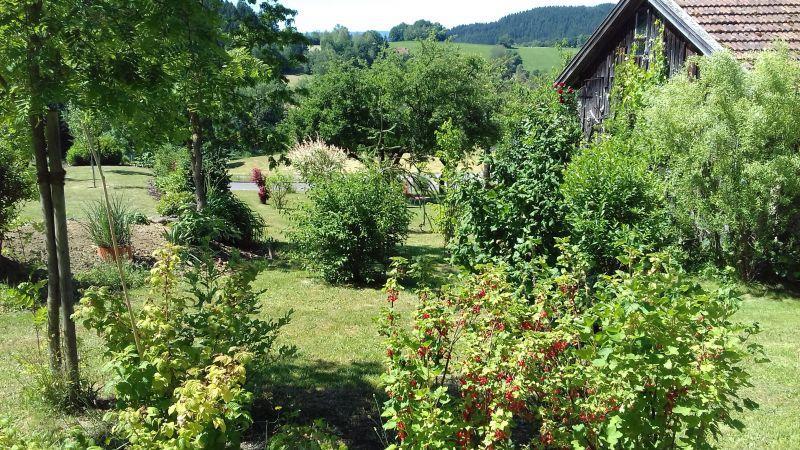 Ferienwohnung Hauk in Drachselsried