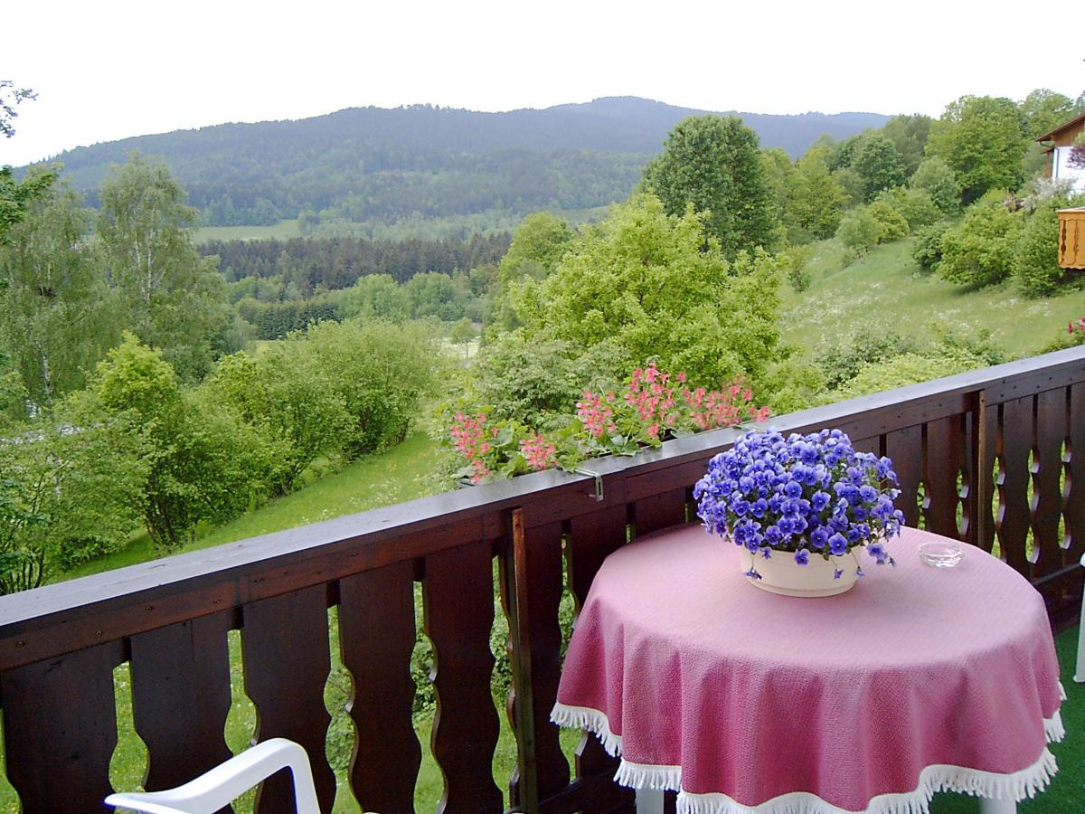 Ferienwohnung Zum Königshang in Bodenmais