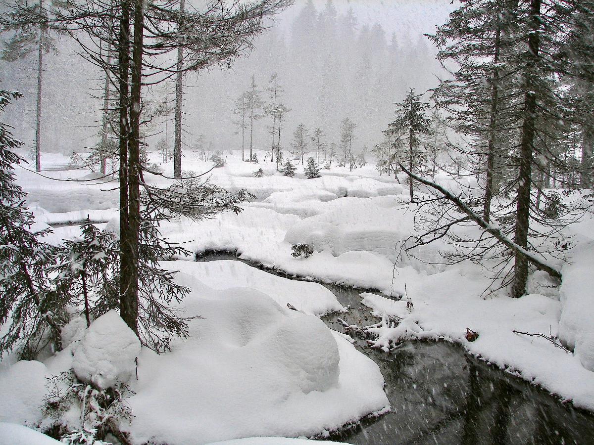 Nationalparkresidenz (Pflaum) in Lindberg