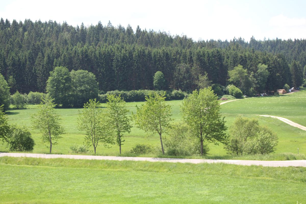 Ferienwohnungen Leithenwald in Zwiesel
