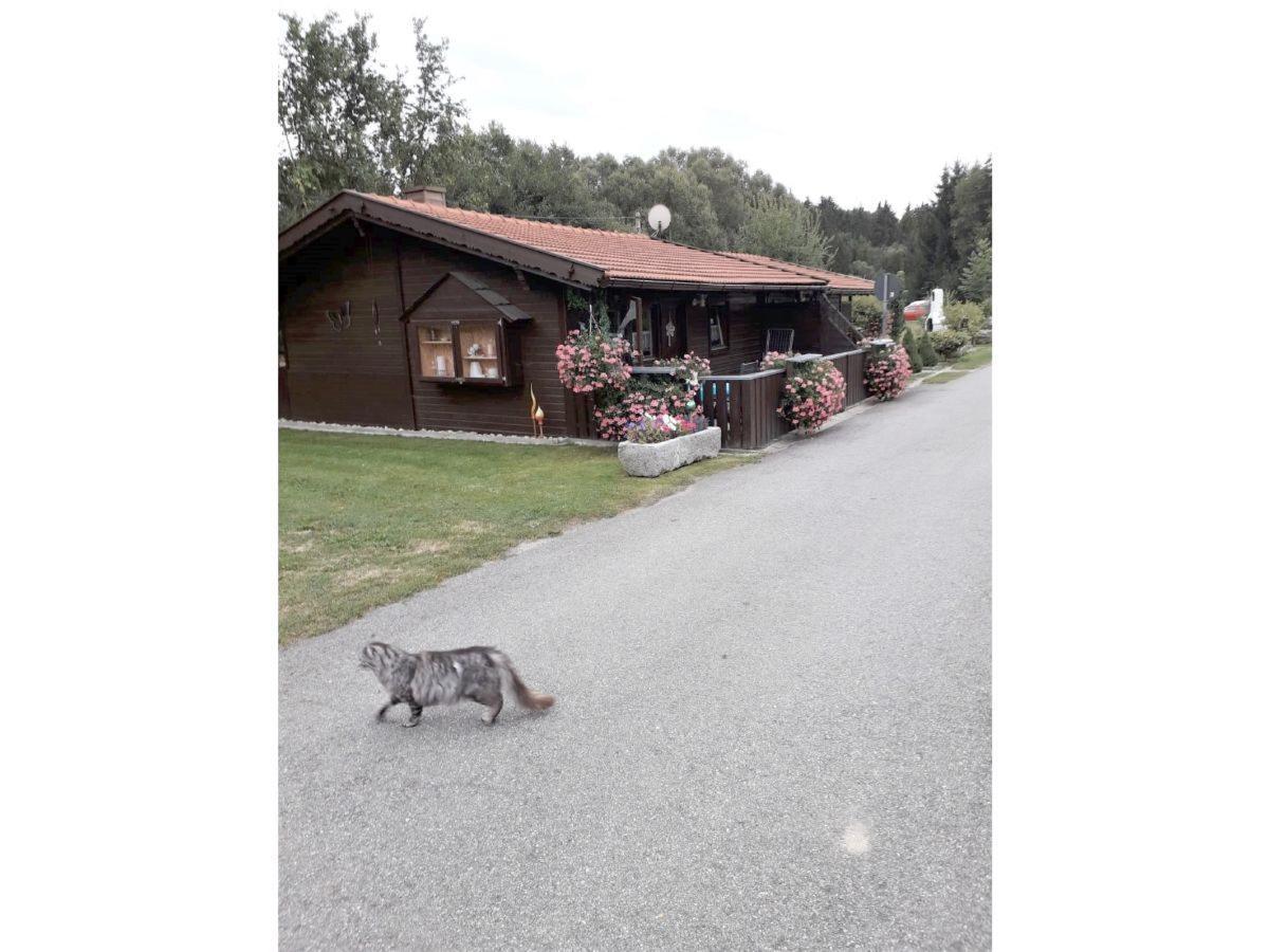 Gerda´s Ferienhäuser in Eppenschlag