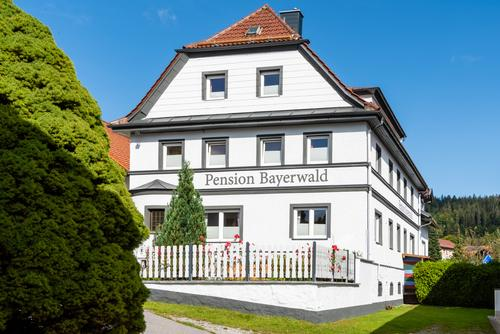 Pension Bayerwald  in Bodenmais