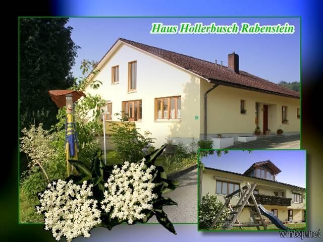 Haus Hollerbusch   in Zwiesel