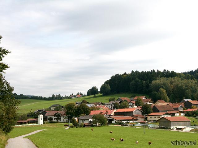 Ferienhof Hackl in Zwiesel