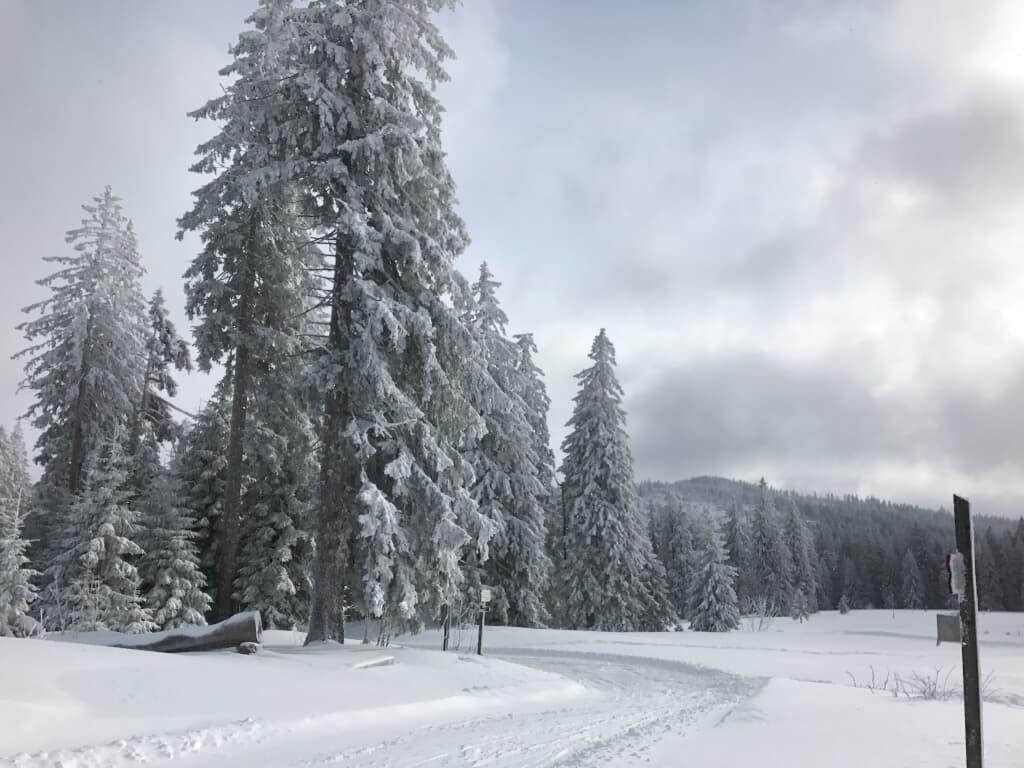 Ferienresidenz Am Weißen Regen in Bad Kötzting