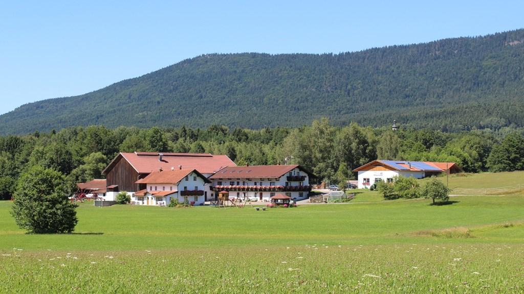 Preiß Matthias in Bad Kötzting