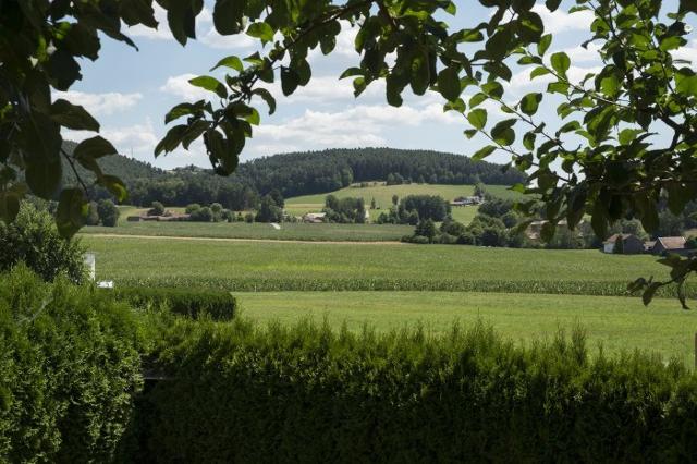 Ferienwohnungen Feldbauer in Cham