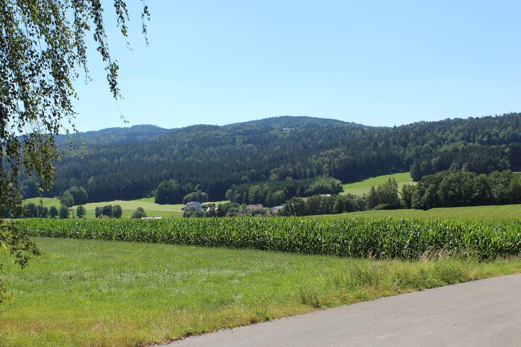 Villa Weitblick in Waldmünchen