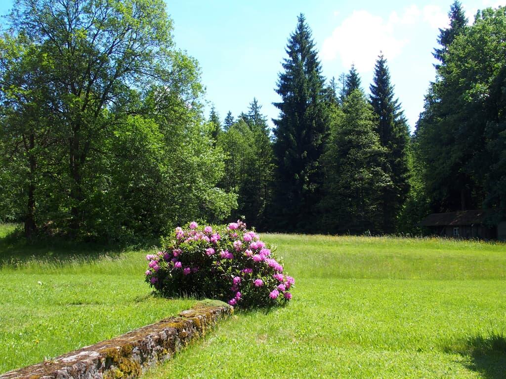 Fewo Schächtelschleif in Waldmünchen