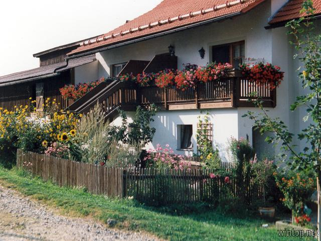 Haflingerhof Blöchinger in Grafenau