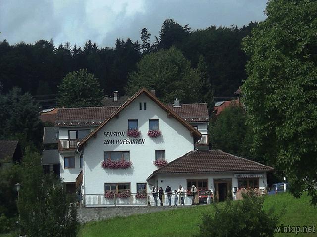 Gasthaus-Pension Zum Hofgarten in Grafenau