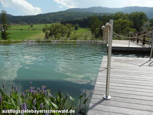 Gasthof Zum Wirt / Ferienwohnung Hohenbogenblick in Neukirchen b. Hl. Blut