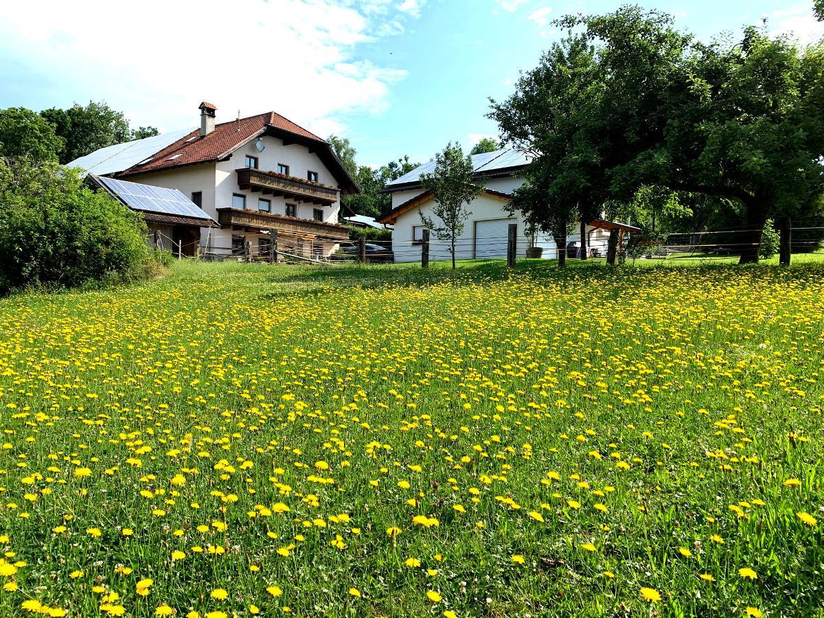 Hausteiner-Hof in Hauzenberg