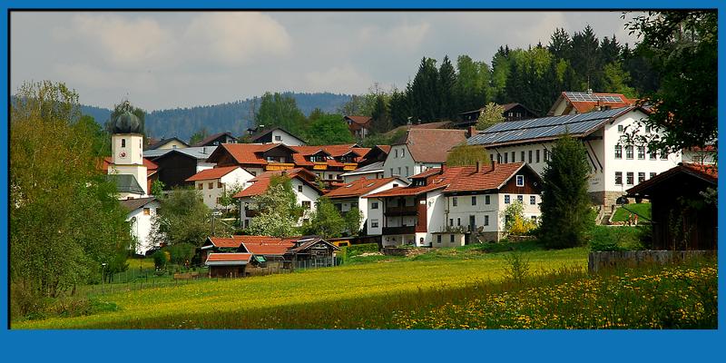 Pension zum Dorfschmied in Langdorf