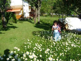 Ferienw. Schreiner Anneliese in Neuschönau