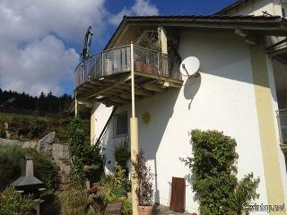 FeWo Ellerbeck Heinr. in Langdorf