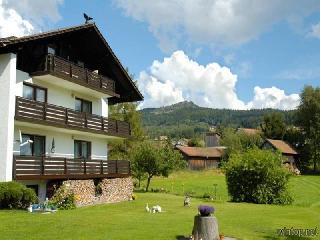 Ferienwohnung Am Kronbergtal  in Bodenmais