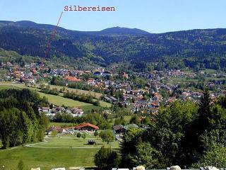 Ferienwohnung Silbereisen in Bodenmais