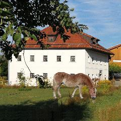 Ferienhof Aiginger in Grafenau