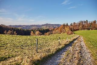 Ferienwohnungen Wald und Wiese in Waldkirchen