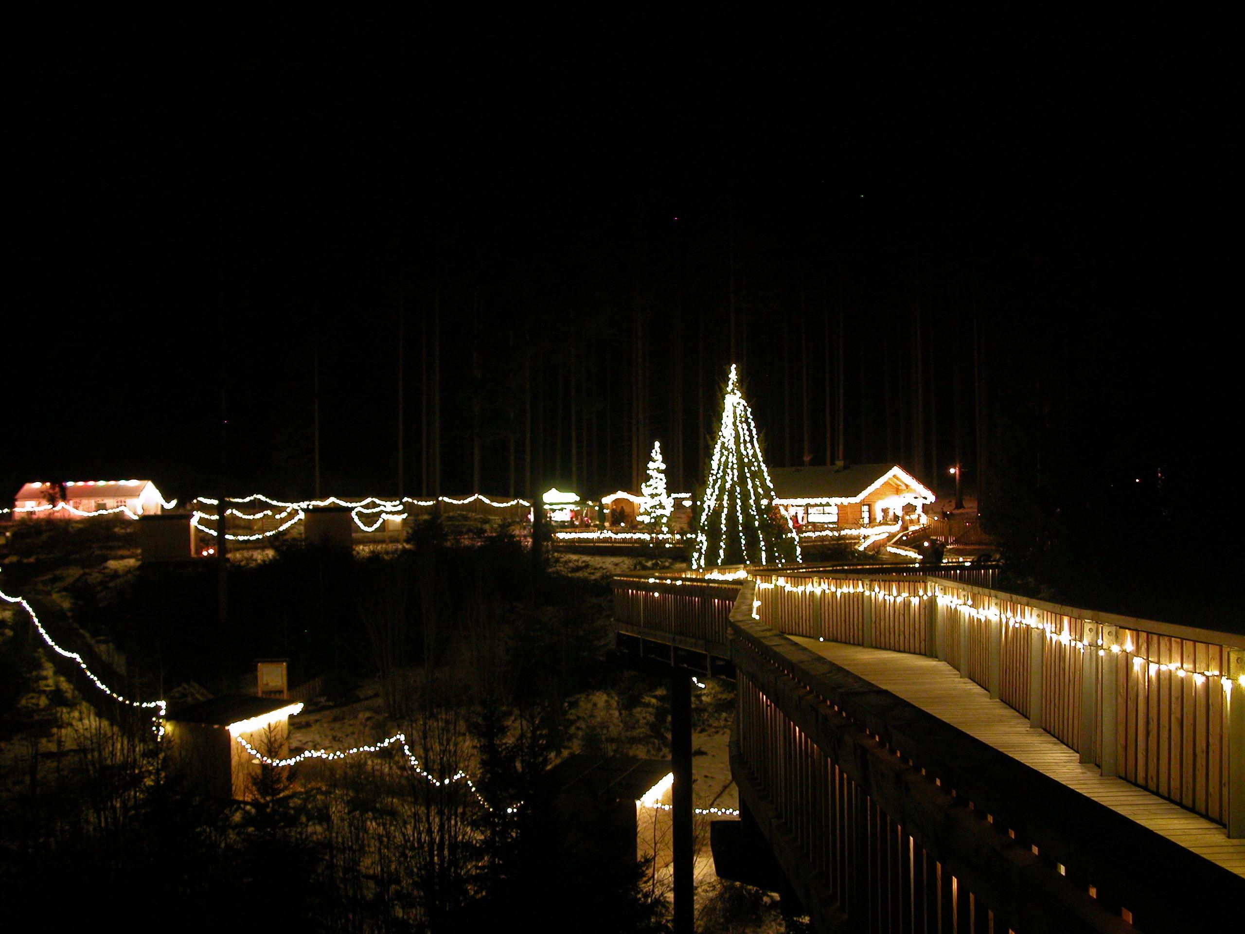 Weihnachtsmarkt am WaldWipfelWeg - Christkindlmarkt